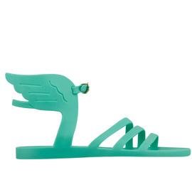 Ikaria Jelly - Aqua