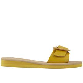 Aglaia - Glossy Yellow