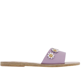 Paola - Lilac