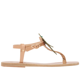 Harley Viera-Newton<br>LITO PALM TREE - NATURAL/GREEN